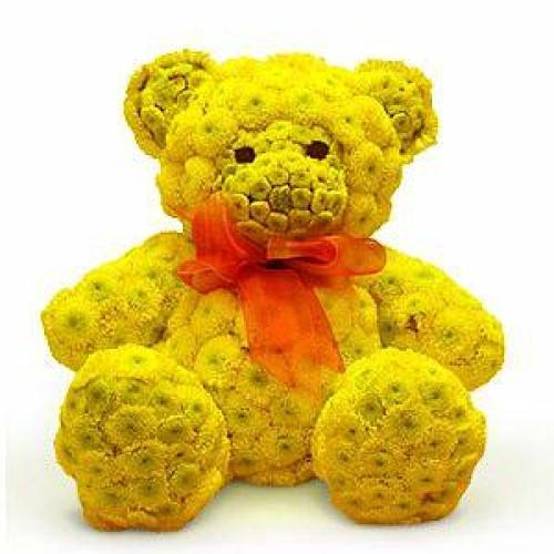 Купить на заказ Заказать Жёлтый мишка с доставкой по Степногорску с доставкой в Степногорске
