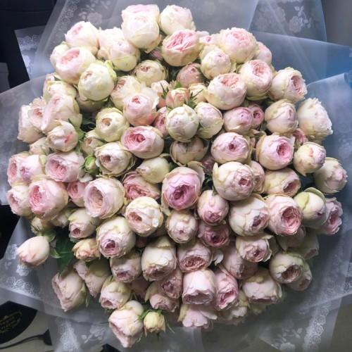 Купить на заказ Заказать 101 пионовидные розы с доставкой по Степногорску с доставкой в Степногорске