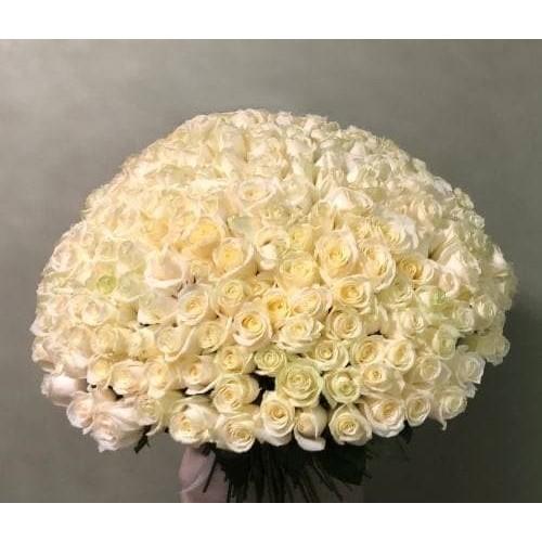 Купить на заказ Заказать 201 роза с доставкой по Степногорску с доставкой в Степногорске