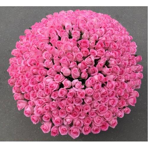 Купить на заказ Заказать 501  роза с доставкой по Степногорску с доставкой в Степногорске