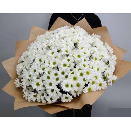 Купить на заказ Заказать 51 хризантема с доставкой по Степногорску с доставкой в Степногорске