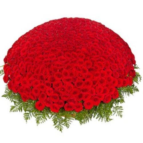 Купить на заказ Заказать 301  роза с доставкой по Степногорску с доставкой в Степногорске
