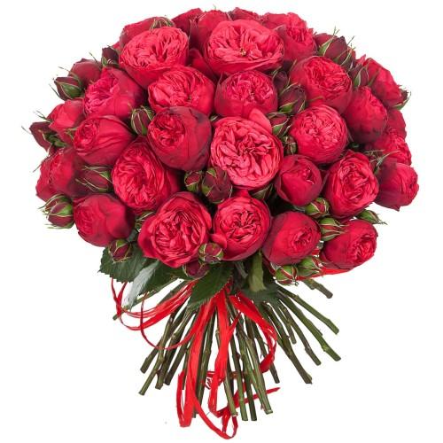 Купить на заказ Заказать Букет из 51 пионовидные розы с доставкой по Степногорску с доставкой в Степногорске