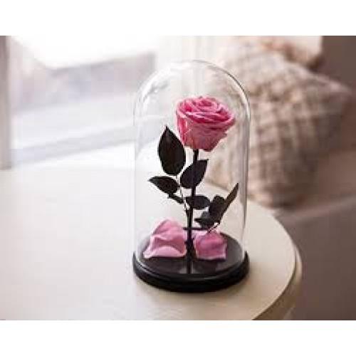 Купить на заказ Заказать Роза в колбе розовая с доставкой по Степногорску с доставкой в Степногорске